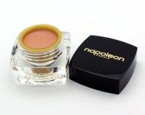 napoleon-perdis-the-one-concealer-review
